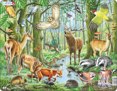 Пазл «Европейский лес», Larsen