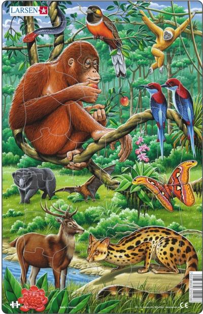 Пазлы «Джунгли»